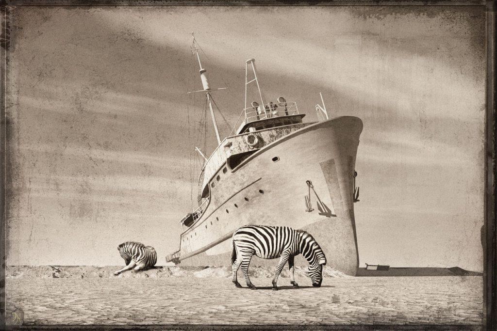 Gulfoss_Zebras devant Epave-b
