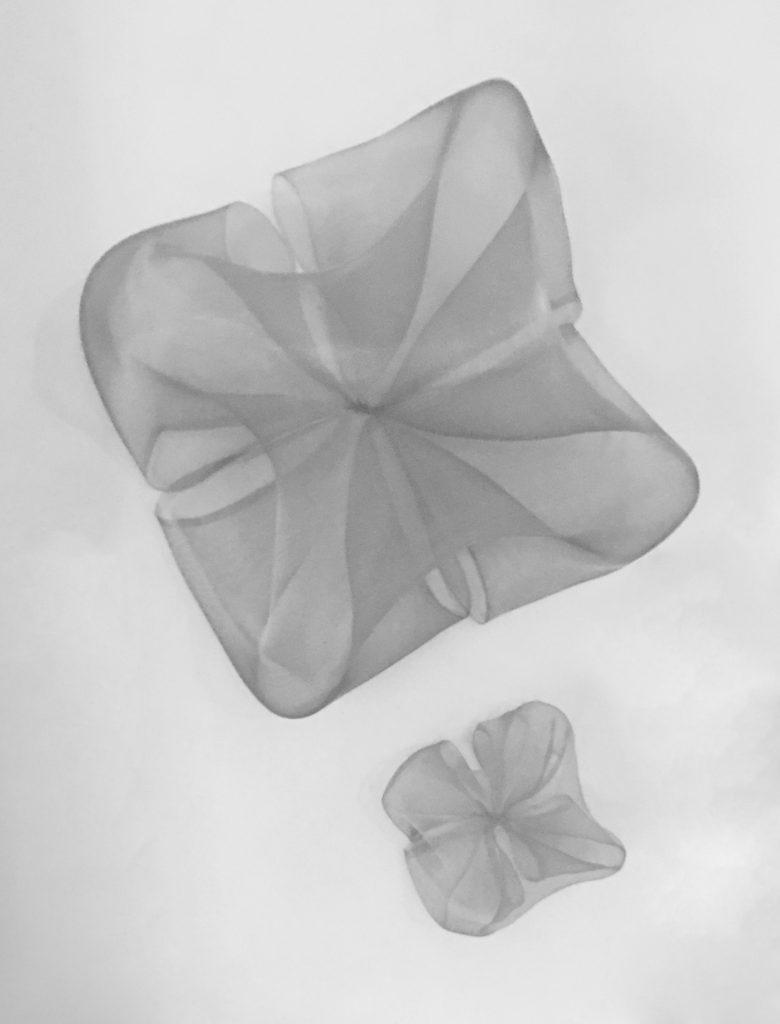 Hugo meduse 3